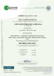 BS OHSAS 18001_2007 IAF28